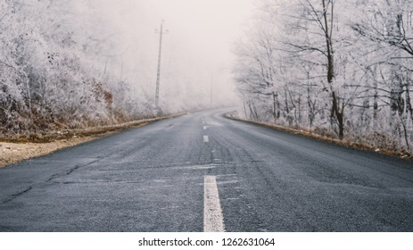 Winter forest road in the snow covered foggy woods