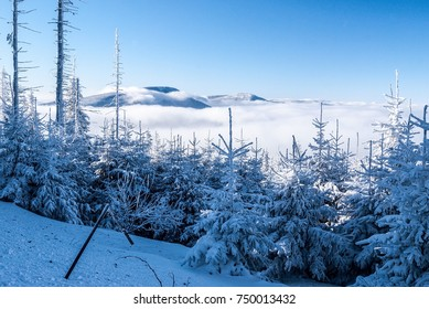 winter frozen Moravskoslezske Beskydy mountains with trees, Smrk and Knehyne hills above mist level and clear sky from hiking trail near Lysa hora hill in Czech republic