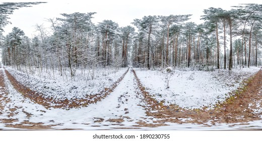 Winter full spherical hdri panorama 360 degrees angle view on dirt road in a snowy forest with gray pale sky in equirectangular projection. VR AR content