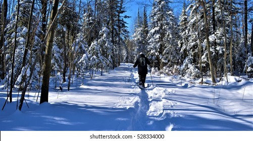 Winter is fun in snowshoeing trail in Barrie, Ontario, Canada