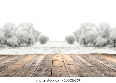winter garden and wooden floor