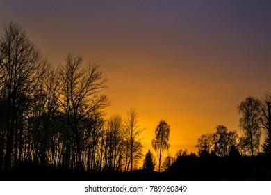 winter golden sunset