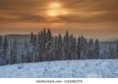 Winter in Harz National Park,Saxony-Anhalt,Germany