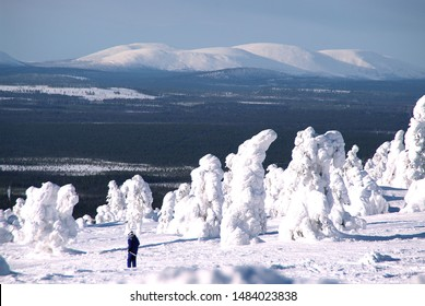 A winter holiday in Finnish Lapland