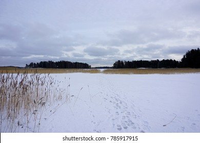 Winter images captured in Finland during spring.
