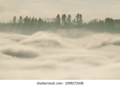 Winter inversion in the hilly forest with mist and clouds