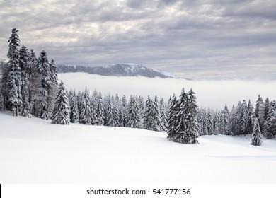 Winter in the Jura mountains, Canton of Vaud, Western Switzerland
