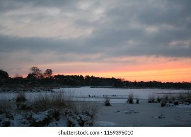 Winter Kampina Boxtel