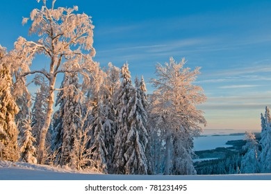 Winter In Koli Finland