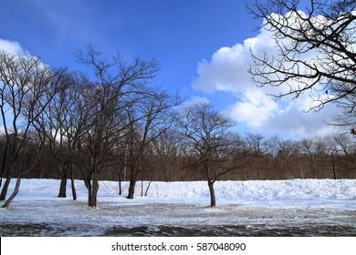 Winter in Lake Kussharo Hokkaido