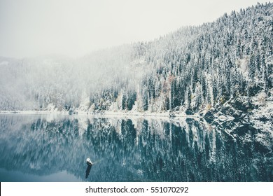 Winter Lake and snowy coniferous Forest Landscape Travel foggy serene scenic view