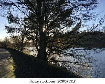 Winter lakeside scenery at sunset