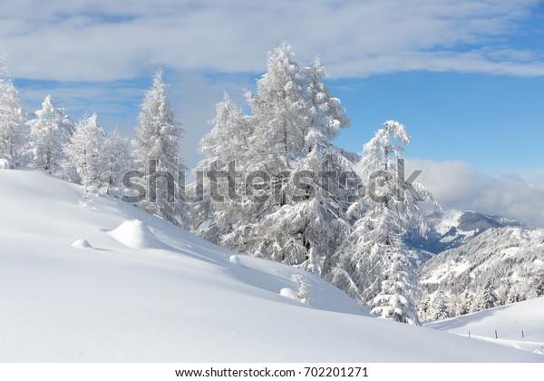 Winter landscape, Austrian alps
