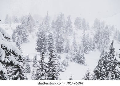 A winter landscape in the Austrian Alps with snow covered trees