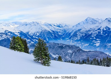 winter landscape.  winter background. mountains at winter