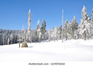 Winter Landscape in bavarian Forest at Bretterschachten Cross-Country Skiing region near Bodenmais,lower Bavaria,Germany