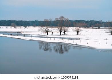 Winter landscape - Biebrza River in Poland.
