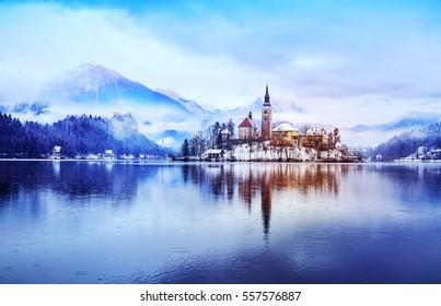 Winter landscape Bled Lake. Travel Slovenia, Europe. Bled Lake one of most amazing tourist attractions. View on snowy Island with Catholic Church in Bled Lake with Castle and Alps in Background.