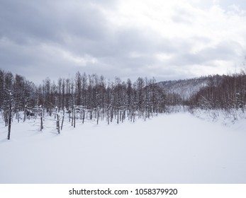 Winter landscape of Blue Pond, Biei, Hokkaido, Japan