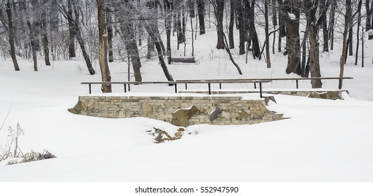 winter landscape bridge over the frozen river in the woods, white snow, tree branchesir