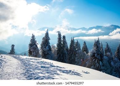 Winter landscape in Carpathian Mountains