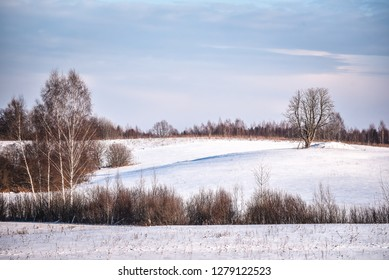 Winter landscape. Cloudy day. Winter decline. The muffled colors.