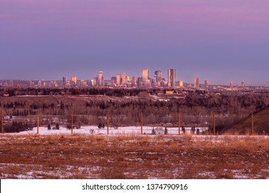 Winter landscape. Distant view of downtown Calgary, Alberta, with magenta skies above and golden grass in foreground.