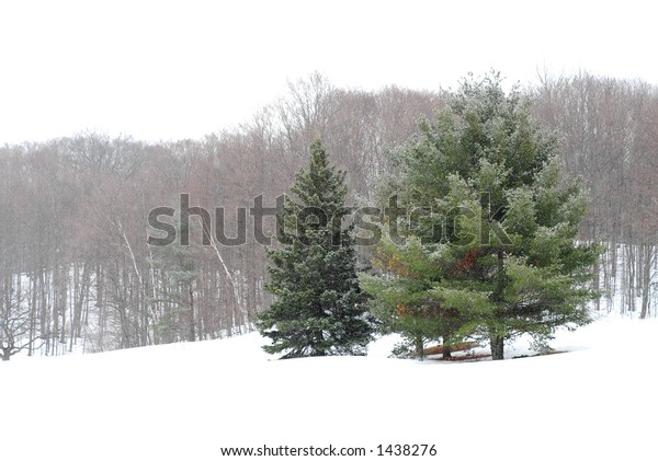 Winter landscape during snowfall