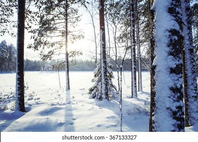 A winter landscape from Finland. Image taken on a sunny winter day in Finland by the lake. Some trees are in the front and forest in the background. Image has a vintage effect applied.