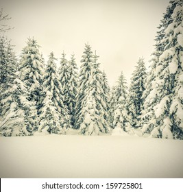 Winter landscape in the forest. Retro stile