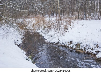 Winter landscape with a forest river. Nature in the vicinity of Pruzhany, Brest region,Belarus.