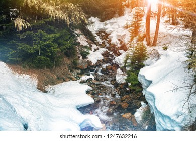 Winter landscape with forest stream. Snowy nature background