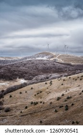 Winter landscape with frosty foggy peaks of Balkan Mountains, Bulgaria