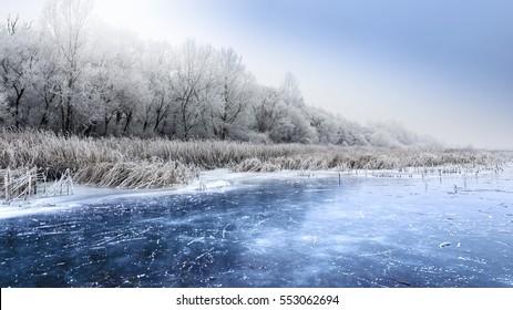 Winter landscape with frozen pond.