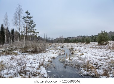 winter landscape with the frozen stream