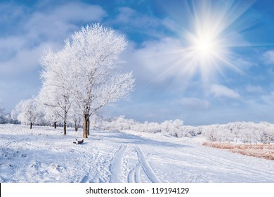 Winter landscape with frozen tree, sun, road and blue sky with clouds