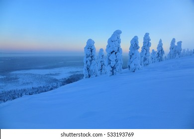 Winter landscape in Lapland north of polar circle, Snow miracle in weak daylight in the polar winter, Pyhä-Luosto National Park near of Sodankylä, Finland