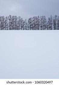 Winter landscape of Mild Seven Hill in Biei, Hokkaido, Japan