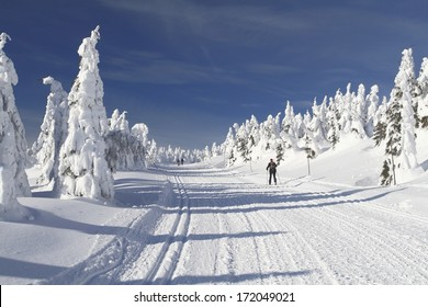 Winter landscape with a modified cross-country ski trails in Jeseniky mountains, Czech Republic.