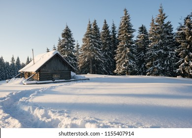 Winter landscape of a mountain forest with a cabin. Trail stamped in the snow towards the cabin. Fir-trees and a cabin covered with snow. Winter traveling.