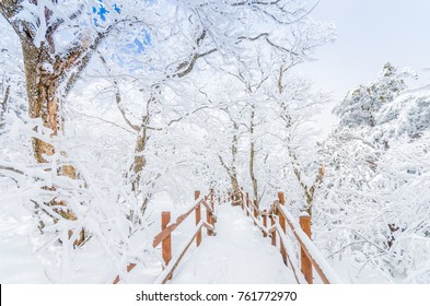 winter landscape in the mountains with falling snow in Seoul,South Korea