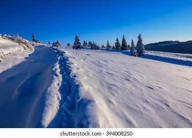 winter landscape in the mountains on a frosty sunny afternoon with a trail in the snow