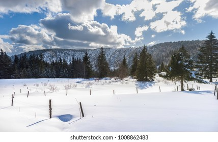 A winter landscape in the mountains on a sunny and bright day, Vosges, France.