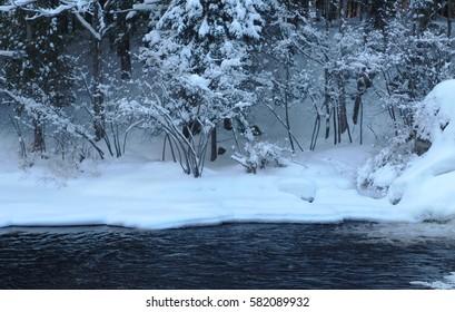 winter landscape nature frozen creek river trees