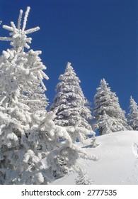 Winter landscape near the slope.