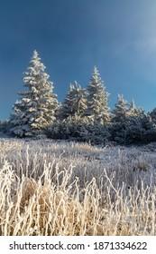 Winter landscape near Velka Destna, Orlicke mountains, Eastern Bohemia, Czech Republic - Shutterstock ID 1871334622