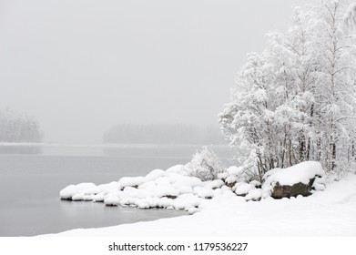 Winter landscape. Newly fallen snow covering lake shore and trees.