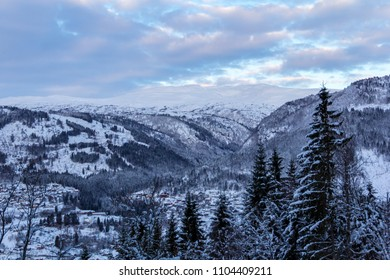 Winter landscape in Norway trees sunset