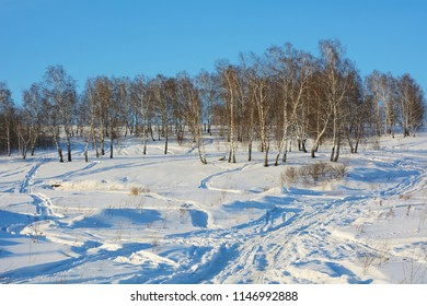 Winter landscape with numerous traces of snowmobiles on white snow in the vicinity of Kemerovo