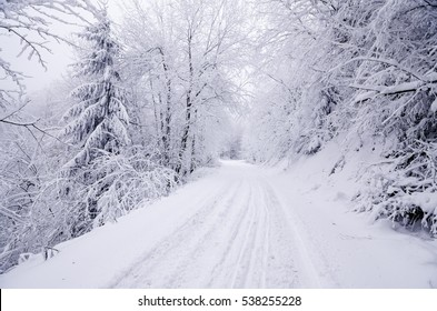 Winter landscape on a road through the forest